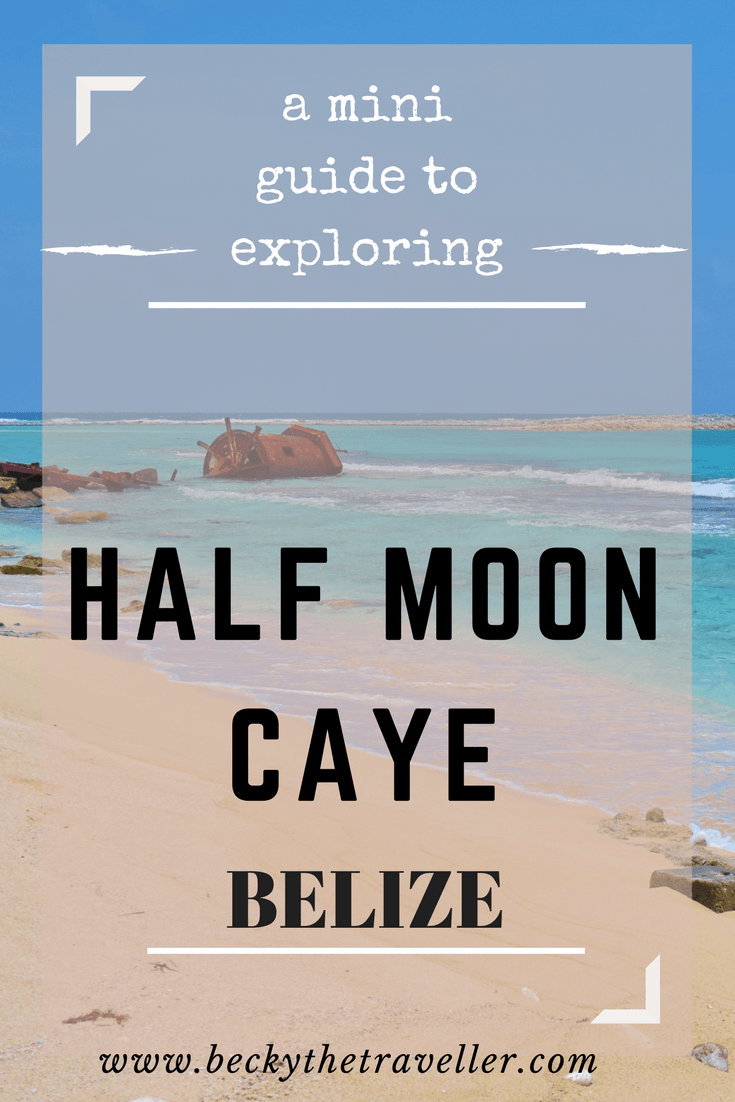 A mini guide for exploring Half Moon Caye. I visited as part of my diving tour lunch stop and realised for a wildlife lover there's lots to explore. Belize | Caye Caulker | Island