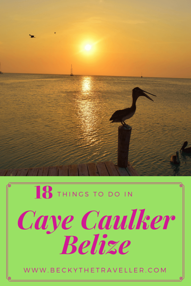 Caye Caulker sunset with pelican