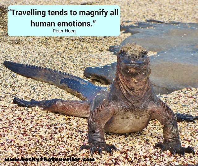 Travelling tends to magnify....