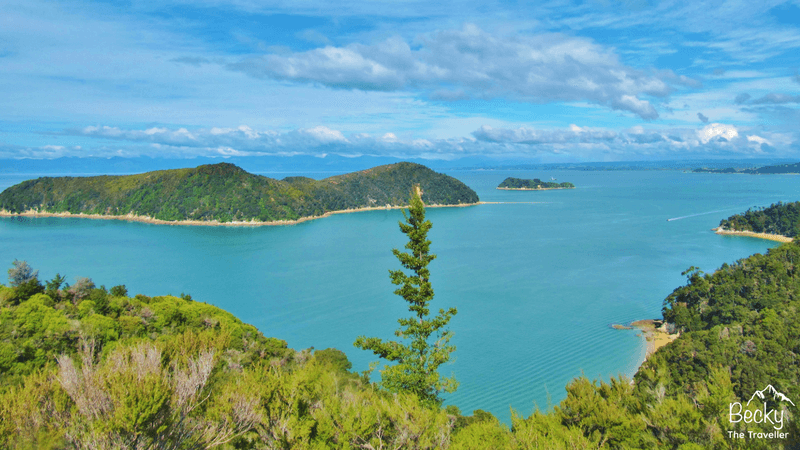 Abel Tasman Coast Track New Zealand - Hiking one of New Zealand's most beautiful hikes. Enjoying the scenery of forests inland and then cold beaches and turquoise water. Top tips for completing the Abel Tasman Coast Track | Hiking in New Zealand | Abel Tasman National Park