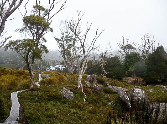 Kia Ora - Tasmania Overland Track Hiking Adventure