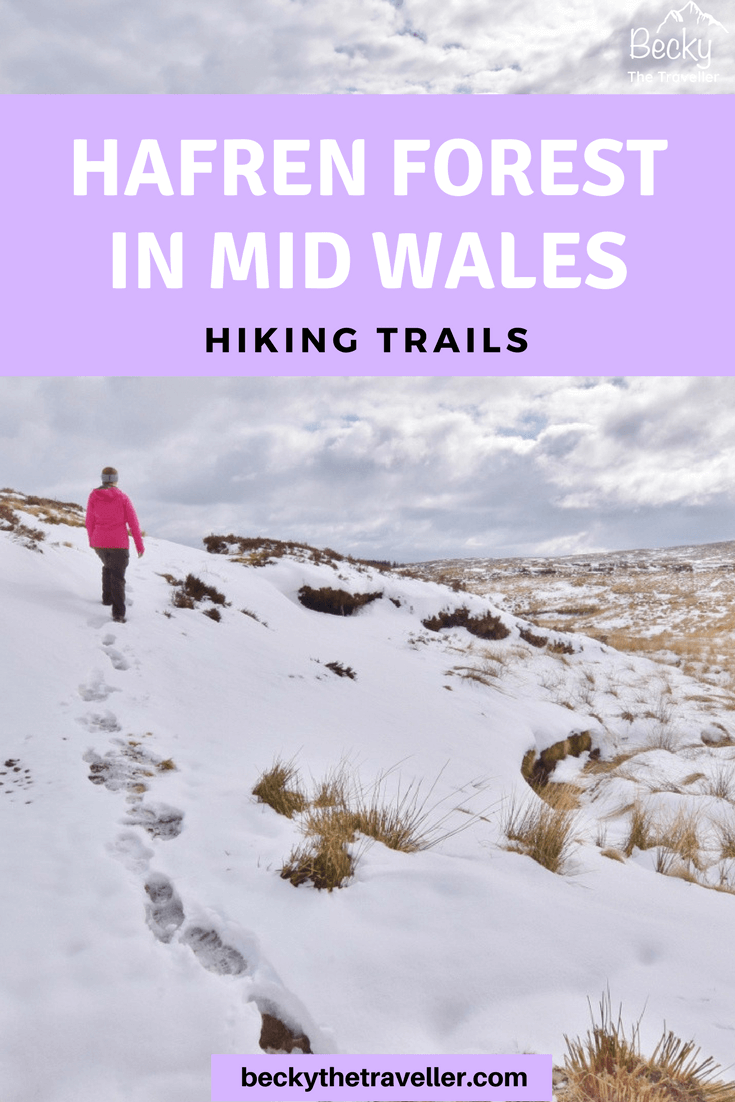 Things to do in Mid Wales - Hafren Forest