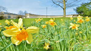 Bath England - A Bath itinerary for what to see and do