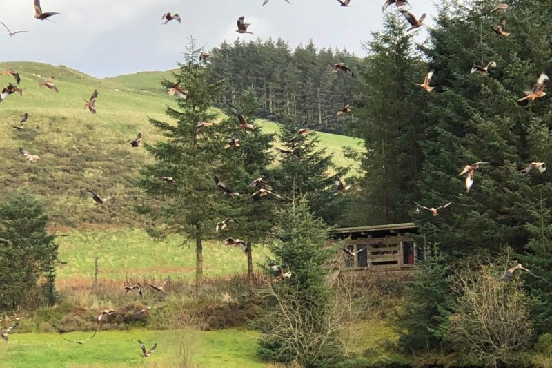 Best places to visit in Mid Wales - Bwlch Nant yr Arian