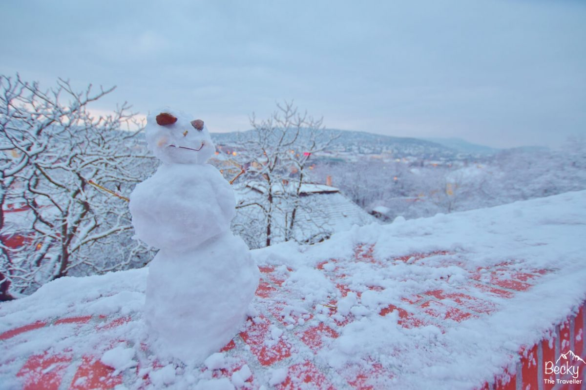 Snowman in Budapest