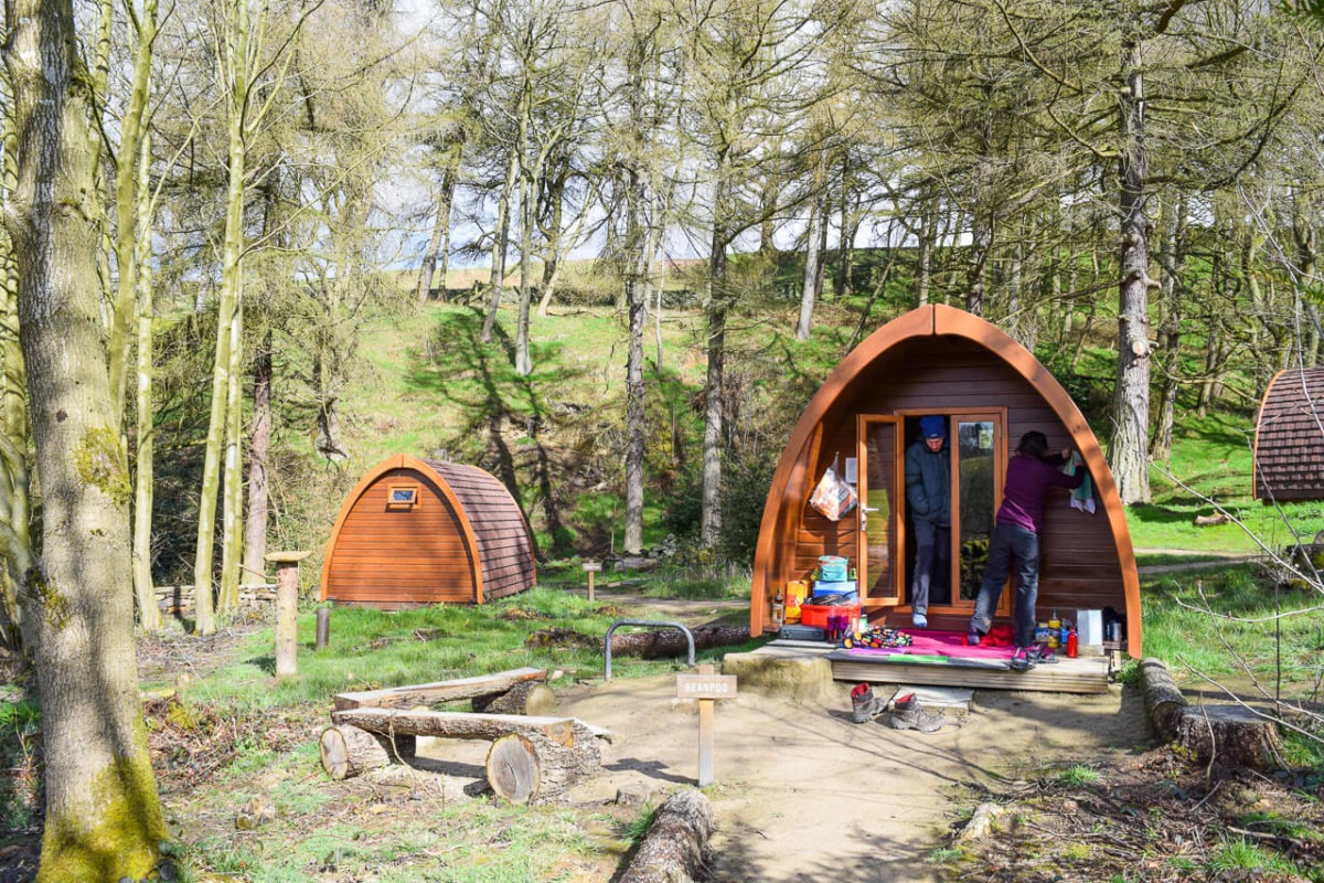 Glamping pods in the woods