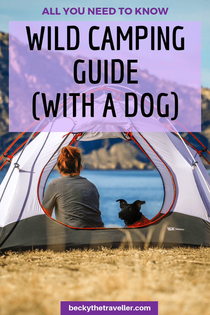 Wild camping guide with dog