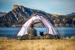 Wild camping with a dog USA