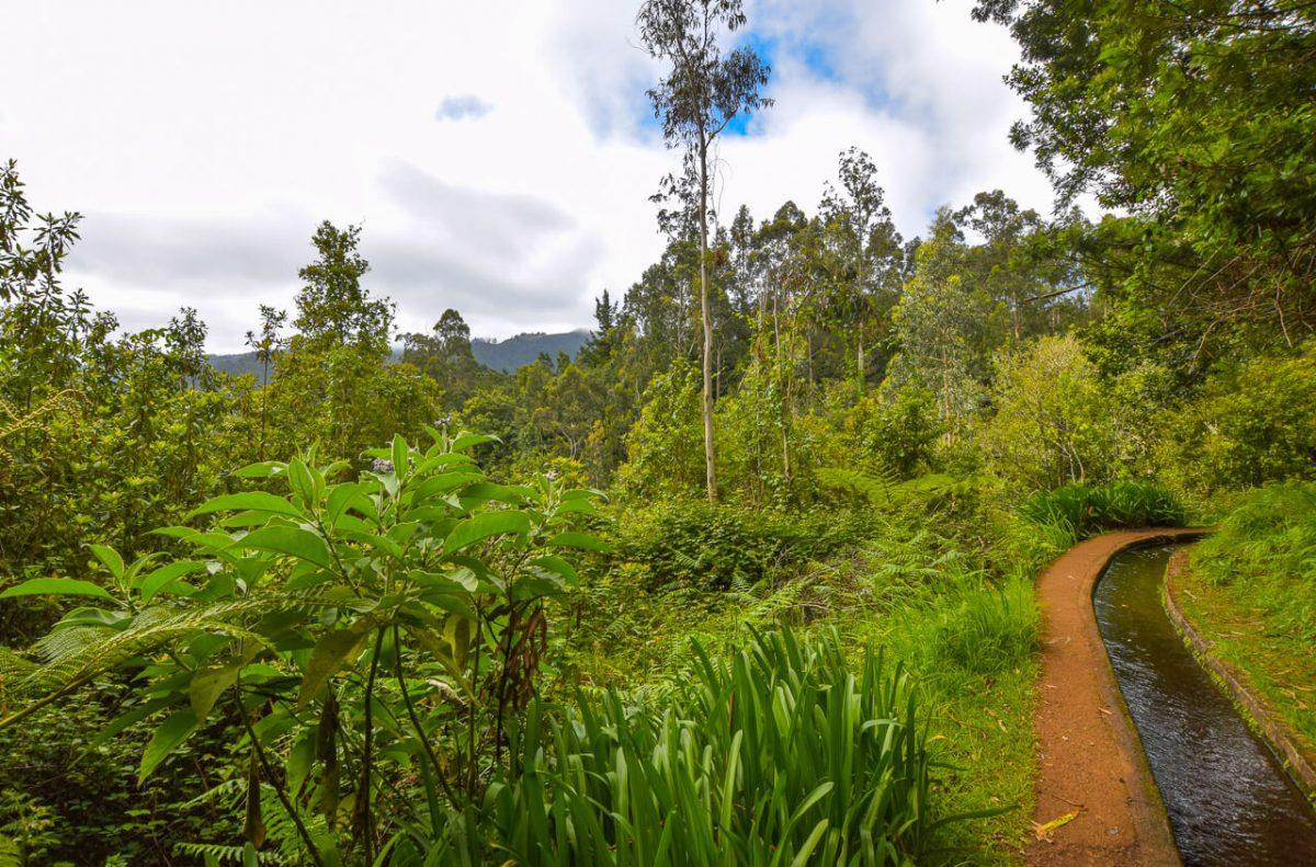 Madeira Walks - Levada walk, Madeira