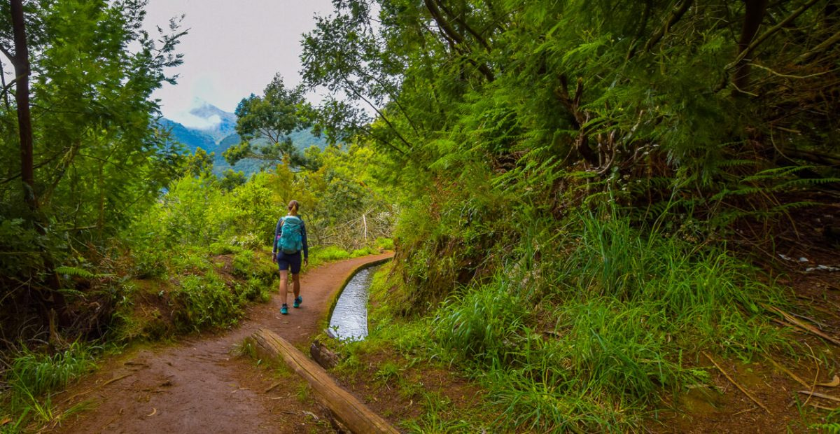 Hiking Levadas in Madeira