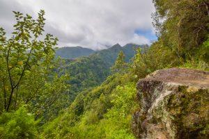 Levada do Rei easy walk, Madeira