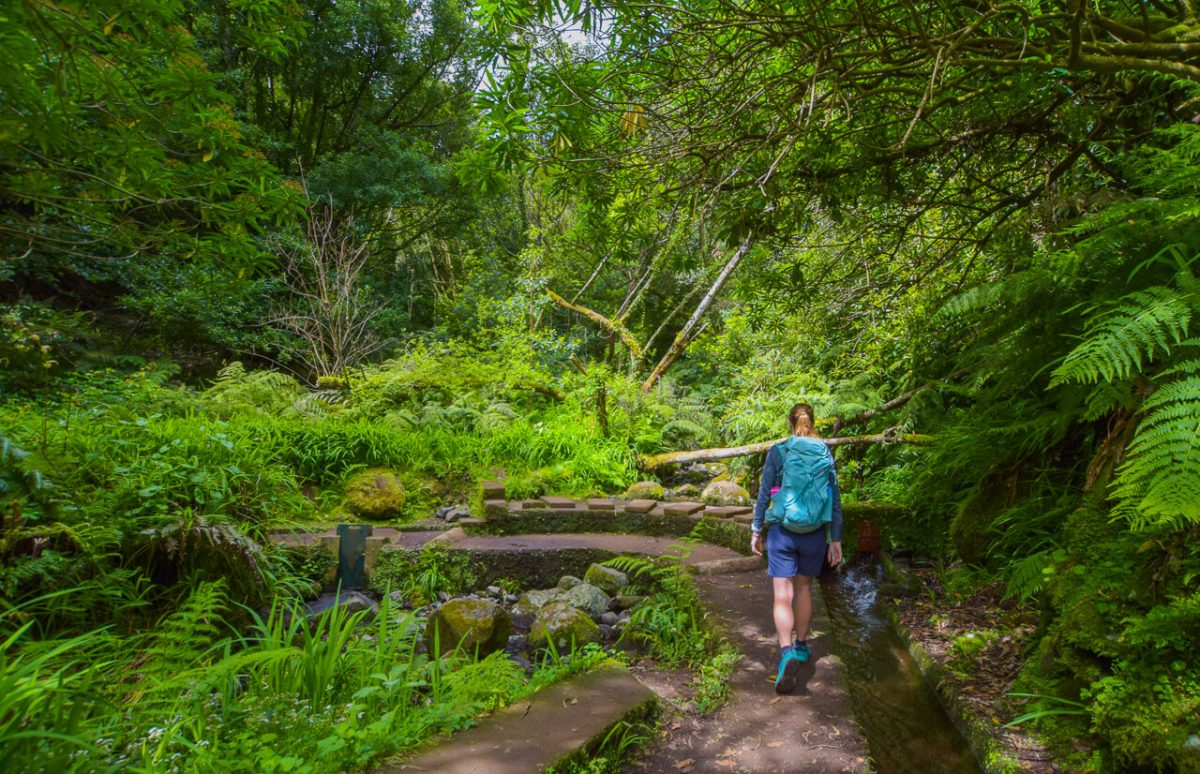 Easy Levada walk, Madeira