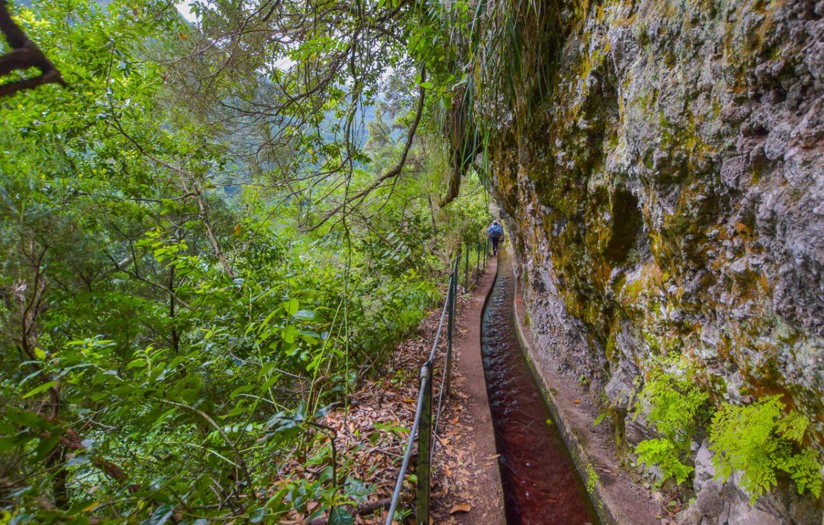 Levada walk, Madeira