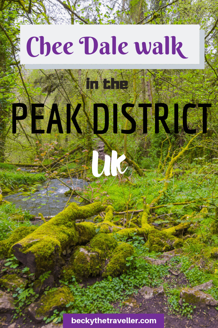 Chee Dale walk + stepping stones, Peak District 4