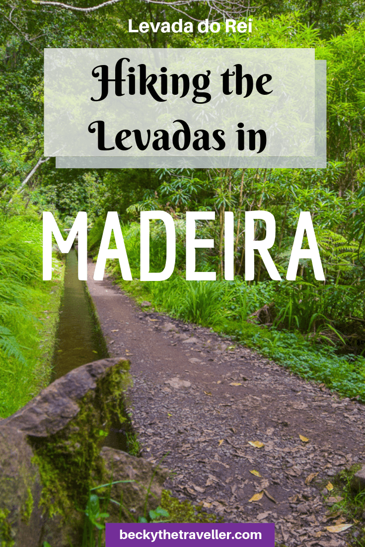 Levada do Rei walk - Madeira levada walks 3