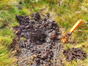 Hole in ground for wild camping toilet