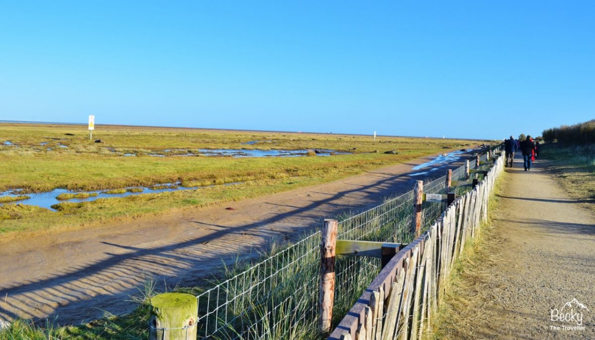 Path and fence at Donna Nook