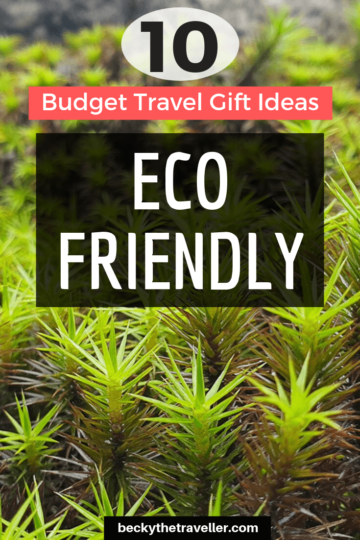 Eco friendly travel gifts budget
