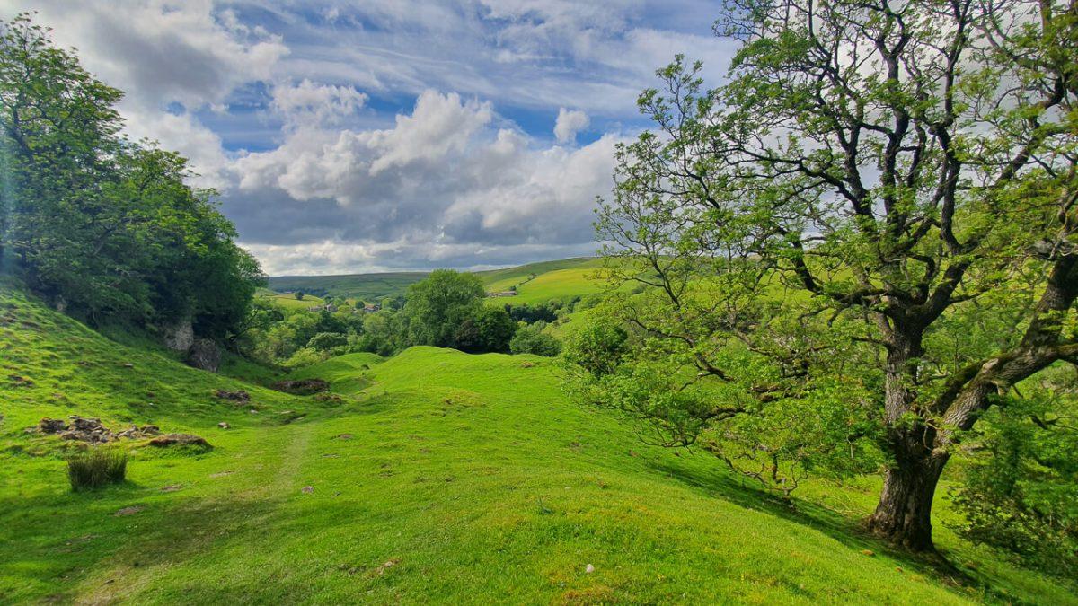 Scenery in UK