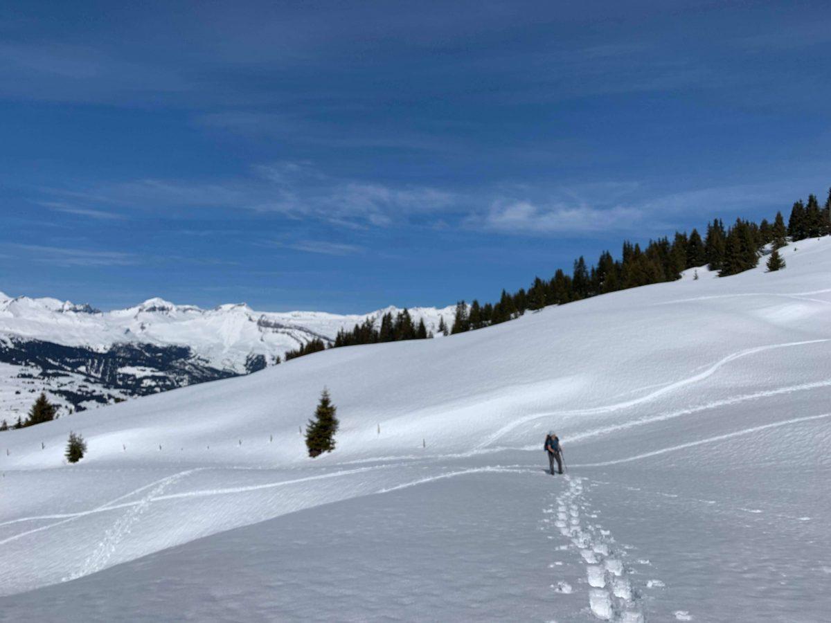 Snowshoeing Holiday Safiental Switzerland