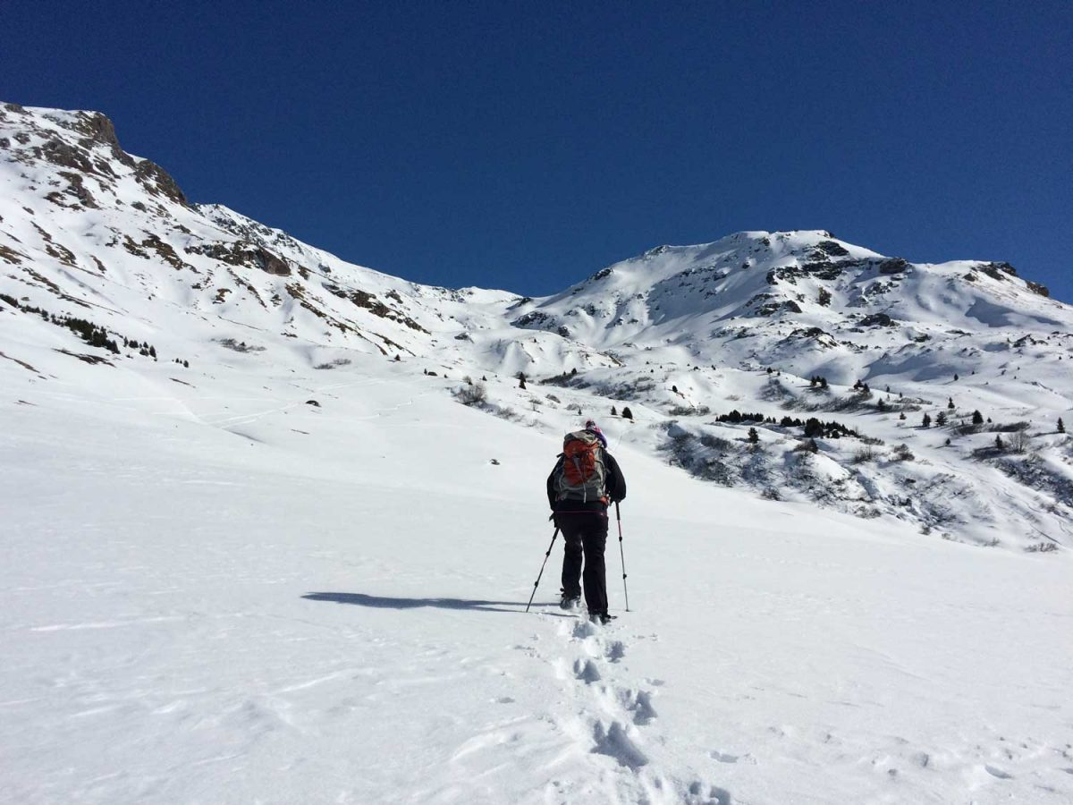 Winter hiking in Prescott National Forest offers plenty of ... |Hiking Snow