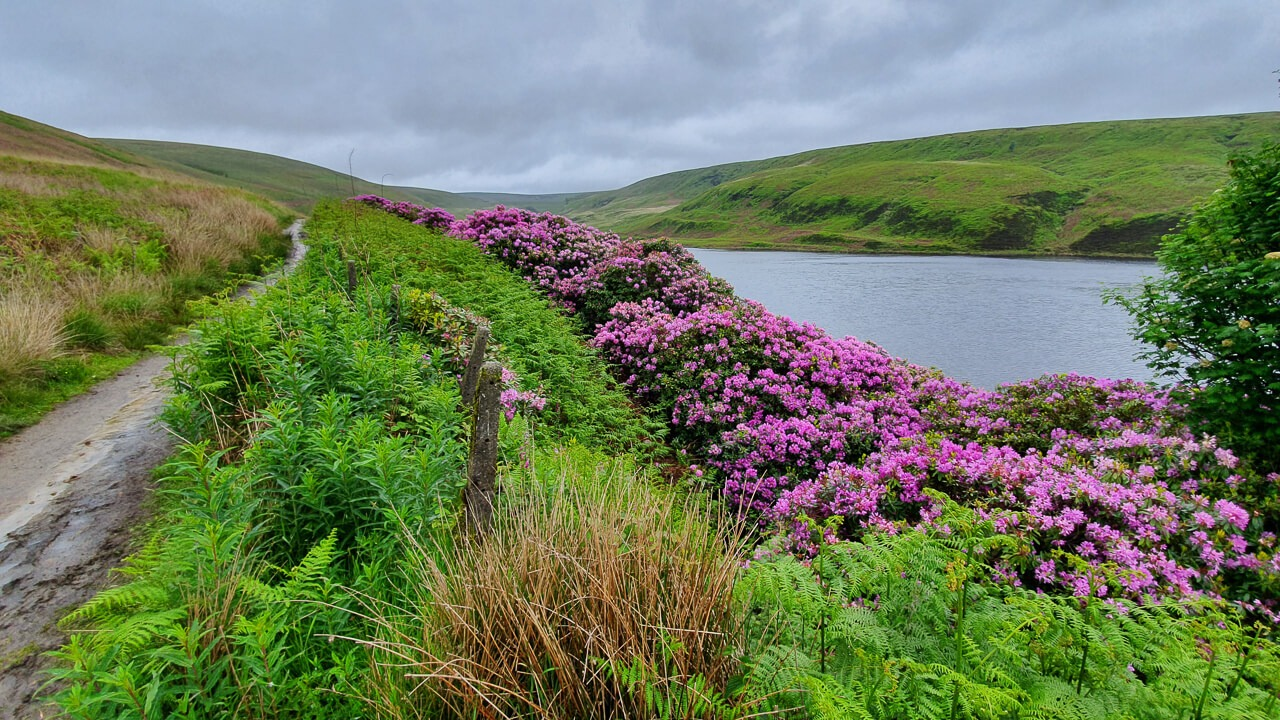 Beautiful scenery on Pennine Way