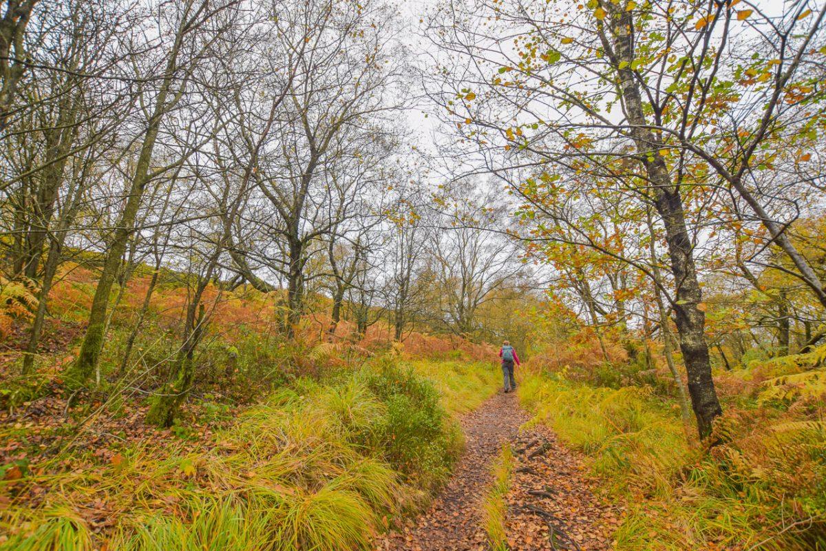 Autumnal walk in Peak District