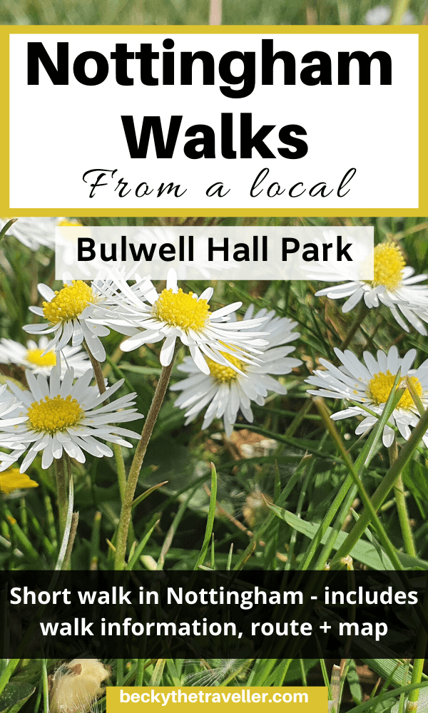 Nottingham walks - Daisies in Bulwell Hall Park
