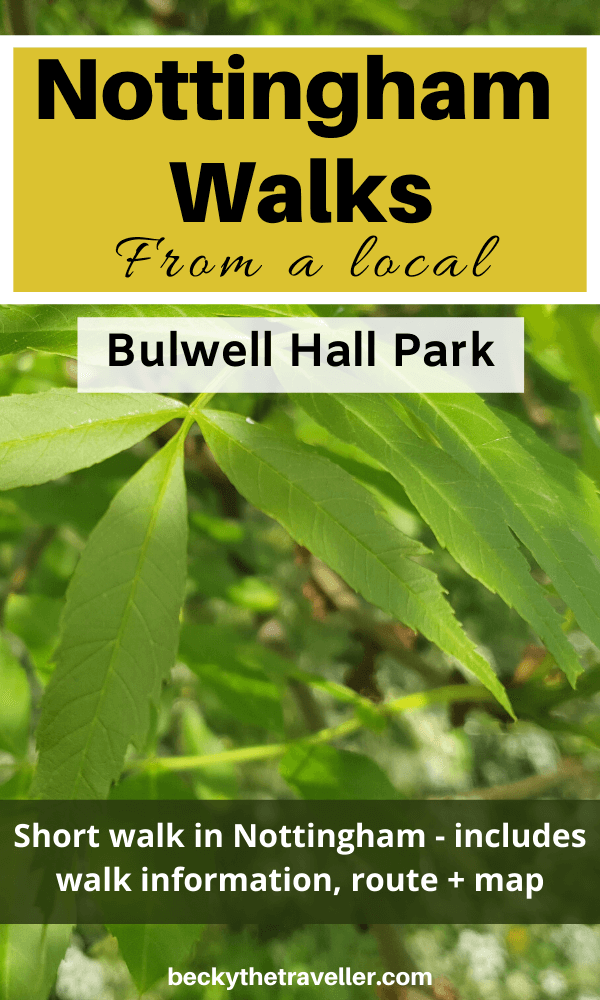 Nottingham walks - Leaves in Bulwell Hall Park