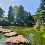 Stepping stones at Highfields Lake Nottingham