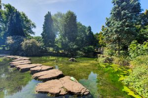 Stepping stones at Highfields Lake Nottingham