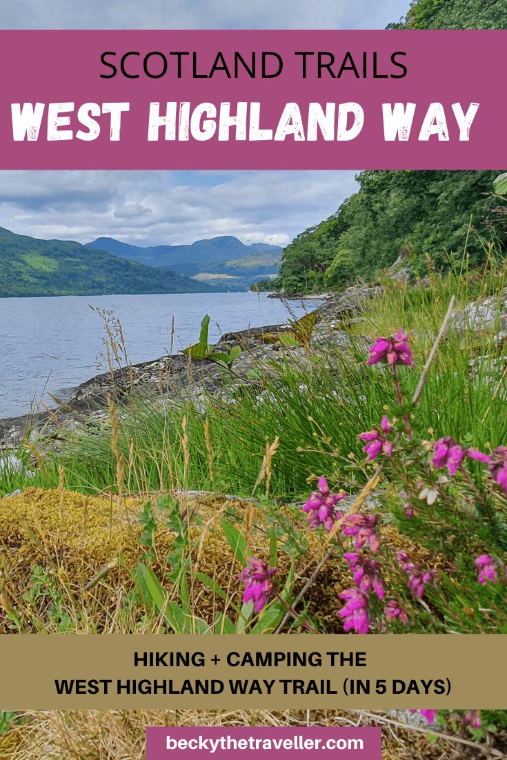 Flowers next to Loch Lomond