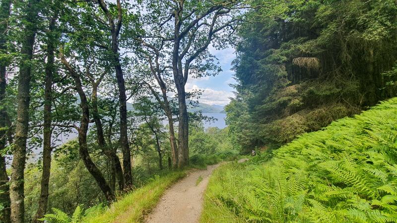 Hiking path next to Loch Lomond