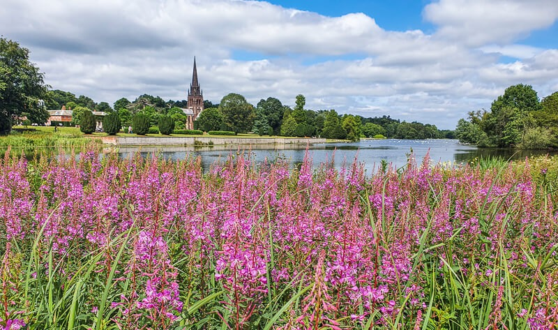 Flowers and lake at Clumber Park